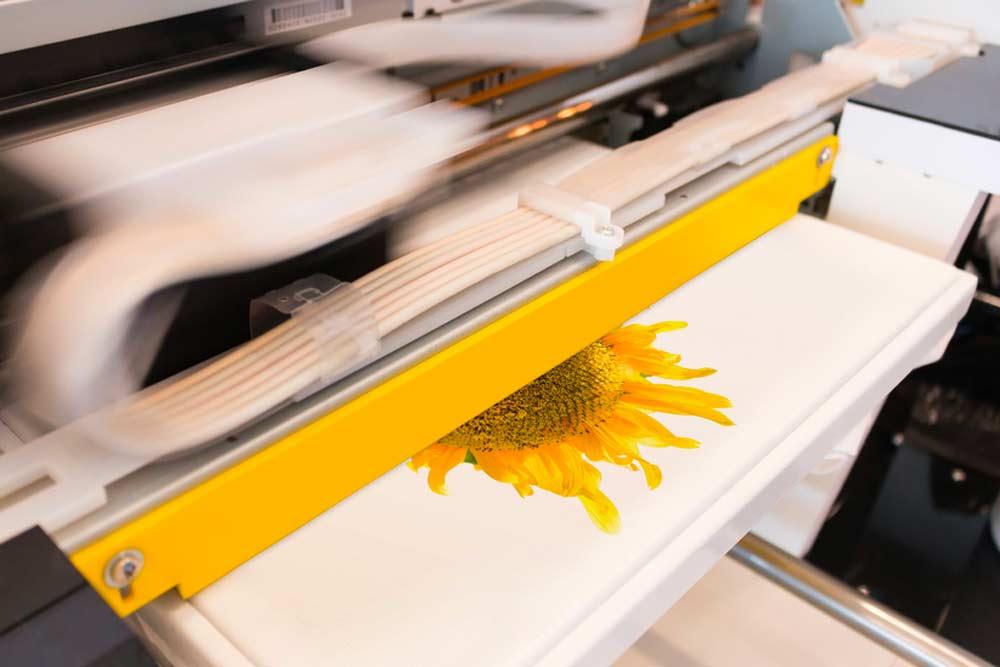 Stampa magliette Treviso in digitale